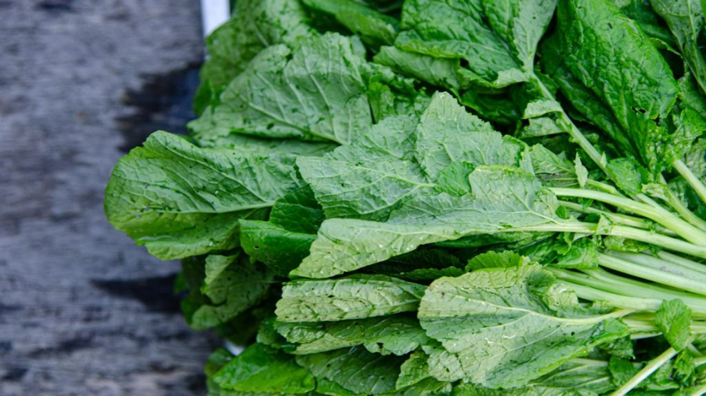 mustard-greens-leaf-1296x728-header